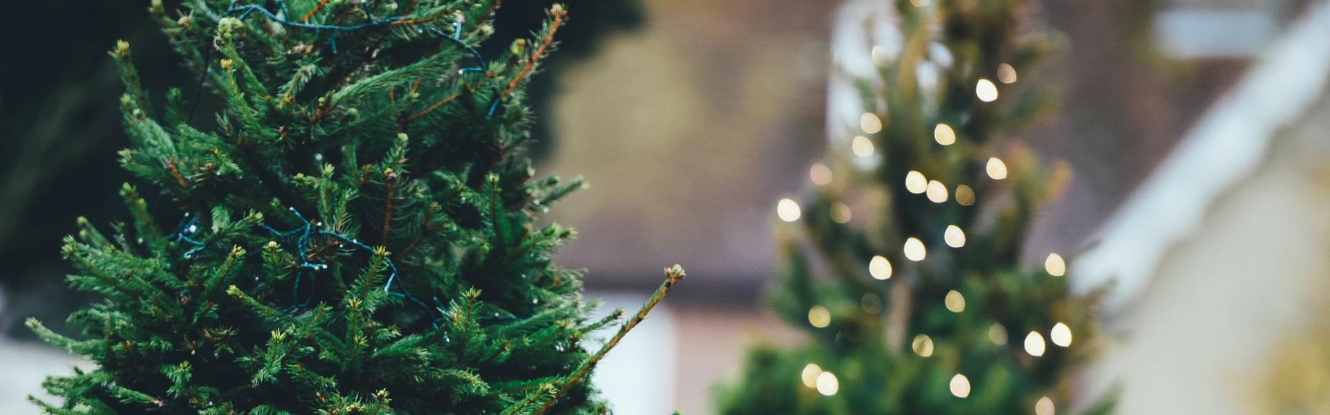 markenrelaunch f r weihnachten die weihnachtsmann co. Black Bedroom Furniture Sets. Home Design Ideas